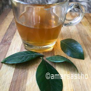 Green Tea-Disease Prevention